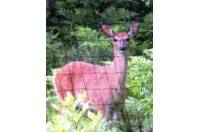 DEER BLOCKER FENCE 8x300